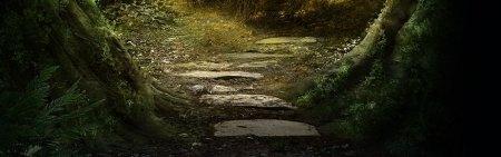 freudland path