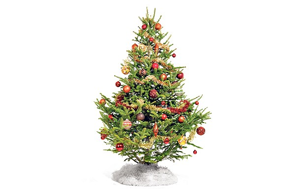 christmas-tree_2066319b