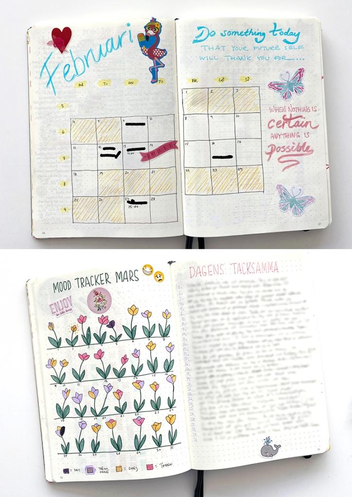 Caroline Möllesand Bullet Journal